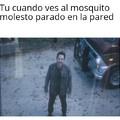 Alabado el mosquito