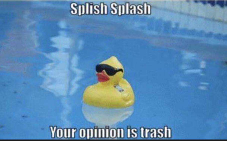 Listen to the duck - meme