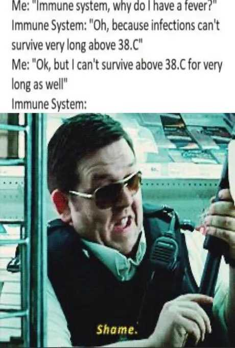 Perhaps, human is an infection too. If it cant survive above 38.C - meme