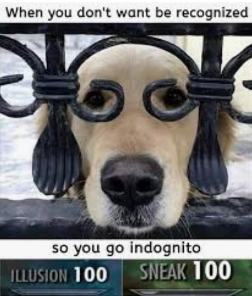 Doggo 100 - meme
