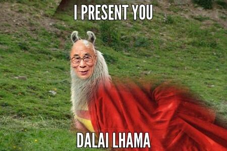 Dalai Lhama topzera - meme