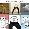 Choisi ton combattants