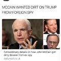 McCain was a communist sympathizer