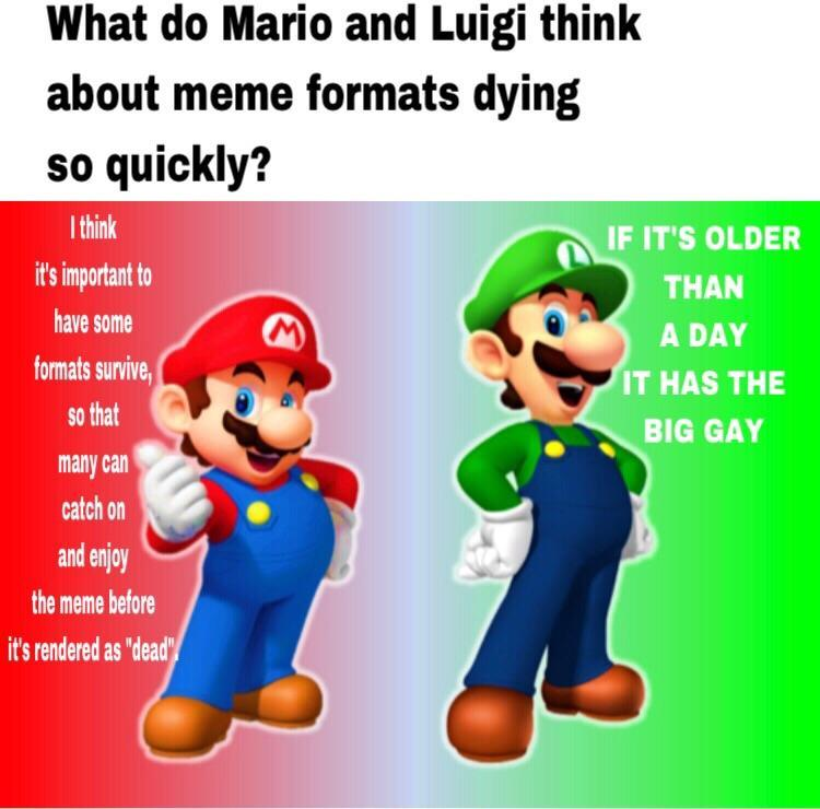 the new mario format - meme