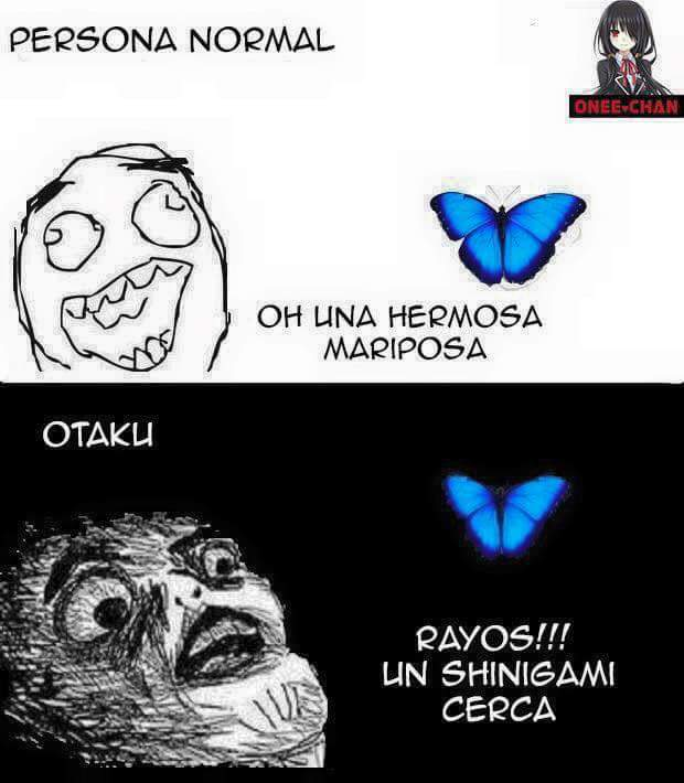 Shinigami! - meme