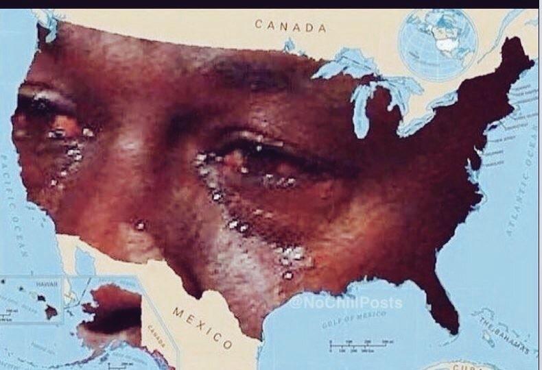 Os EUA dps das eleiçoes - meme