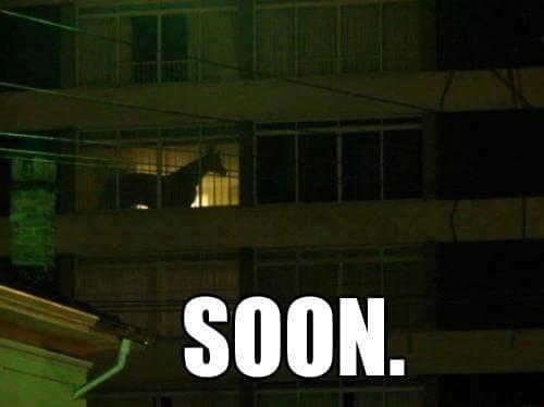 Soon... - meme