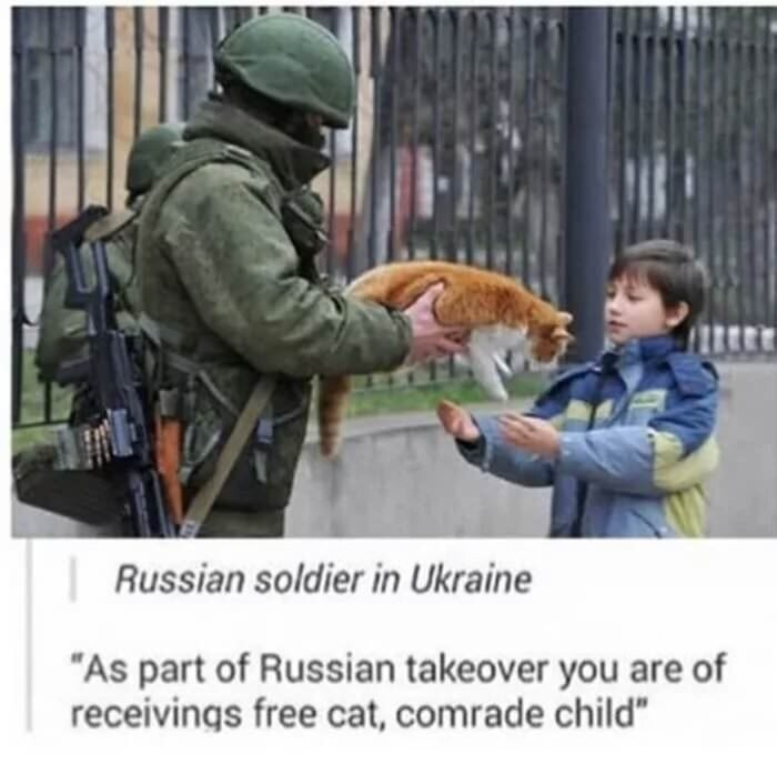 Be careful Glazikov, cat is of cluster grenade - meme