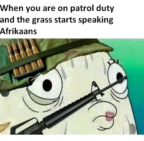Talking Afrikan grass - meme