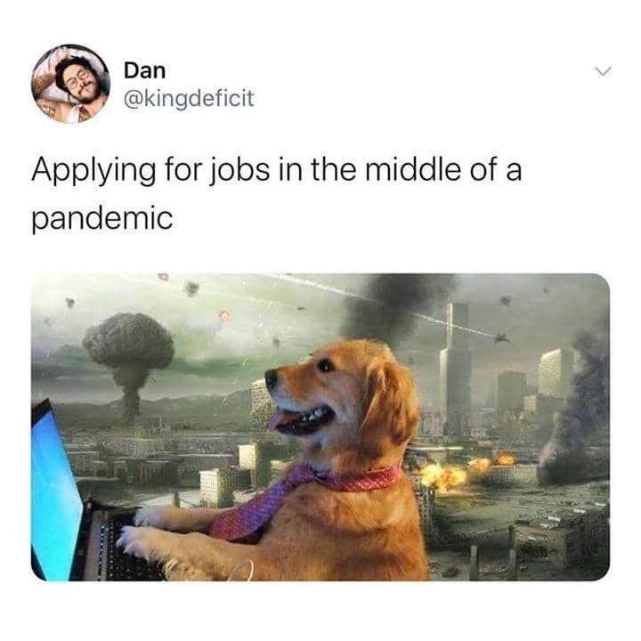 Good boi - meme