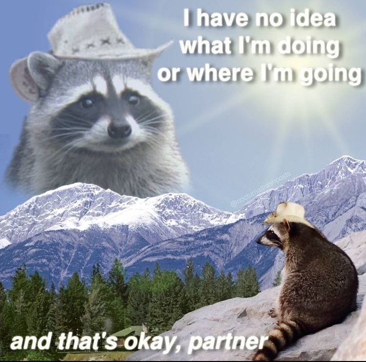 inspirational raccoon - meme