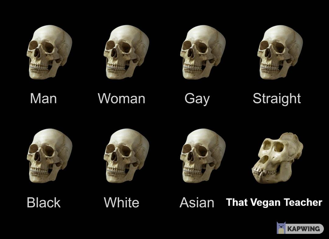 That Vegan Teacher Meme