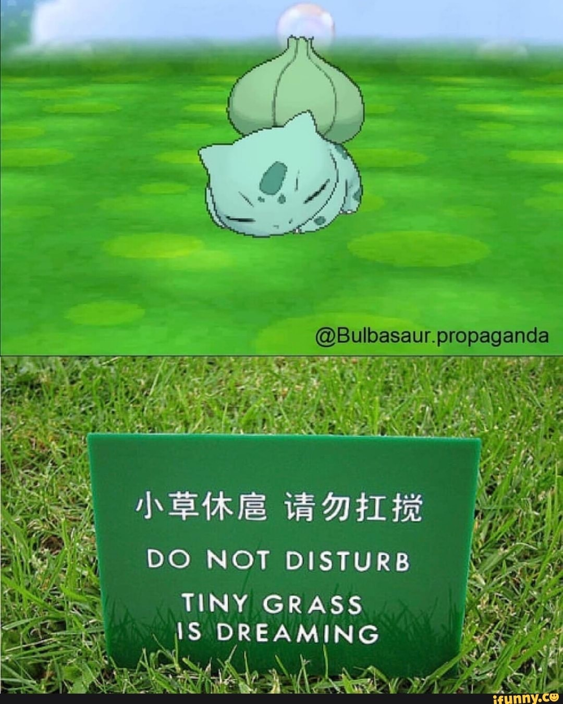 Tiny grass - meme
