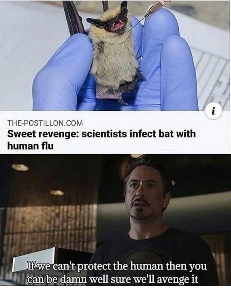 Revenge of the hooman - meme