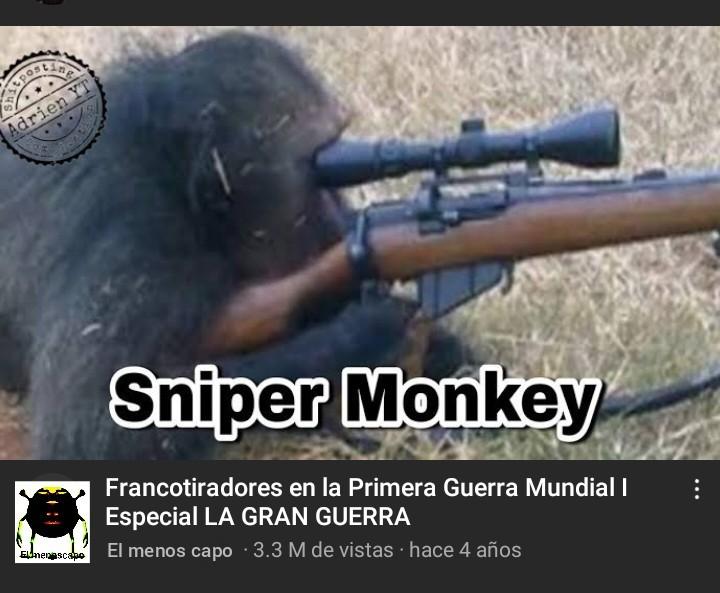 SNIPER MONKEY - meme