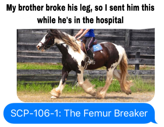 Some OC: My brother was trying out a more energetic horse, who proceeded to throw him into a 6x6 fence pole - meme