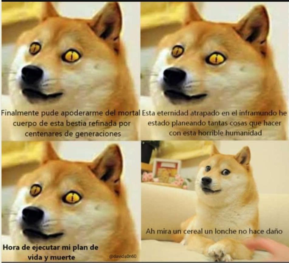 La venganza de los perros ha llegado - meme