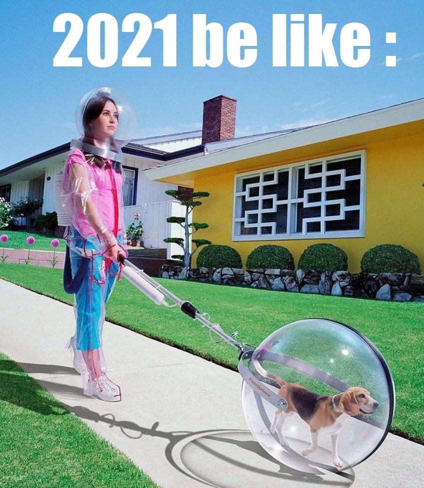 Vivement 2021 - meme