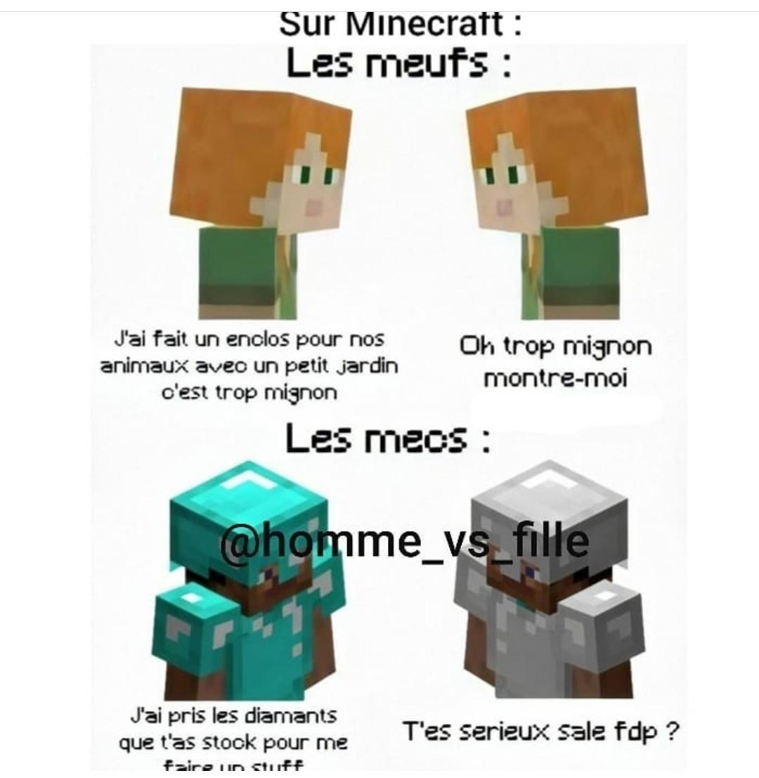 Minecraft edition - meme