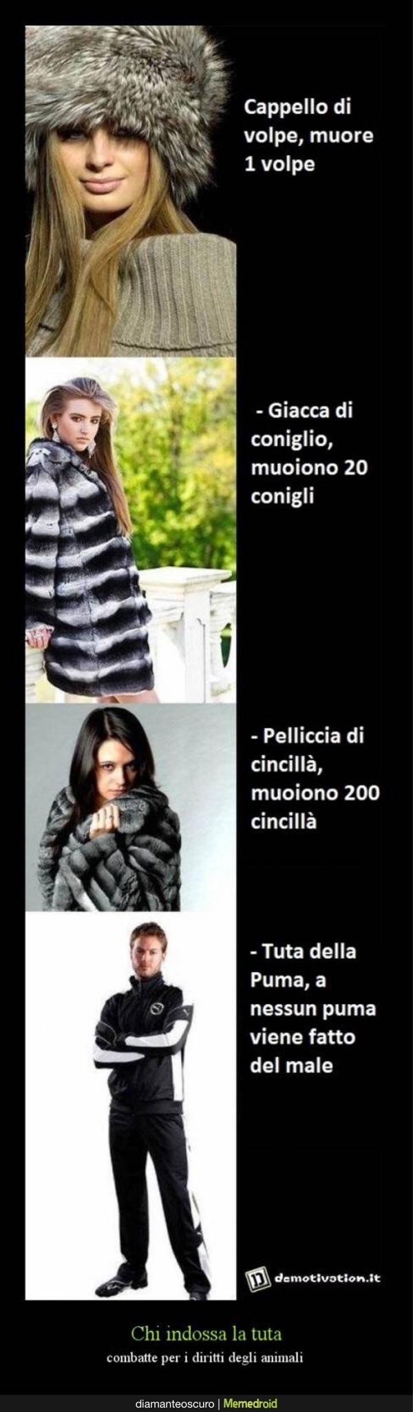 Giubbotti Fatti Con Pelliccia Di Animali - meme