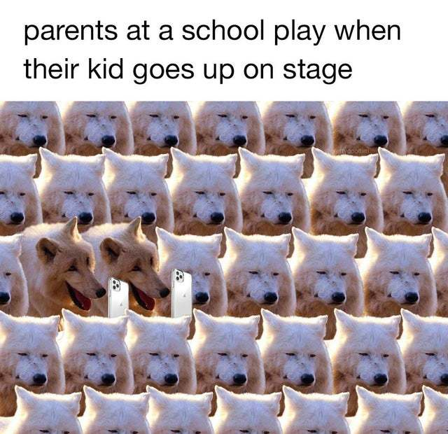 parents at a school play when their kid goes up on stage - meme