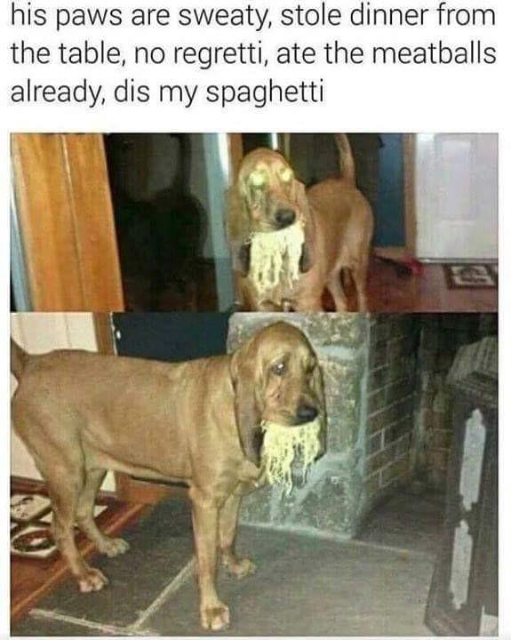 The Real Slim Pupper - meme