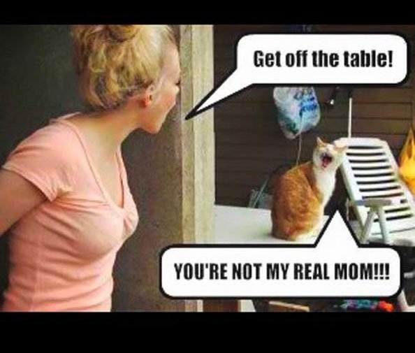 YouRE NOt My rEAl MoM - meme