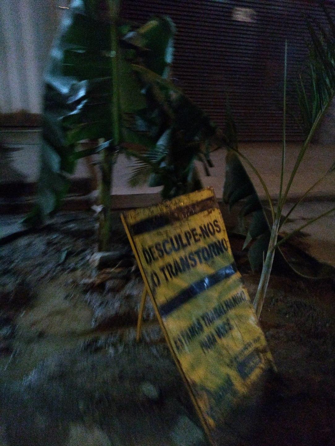 Plantaram uma bananeira no buraco do asfalto - meme