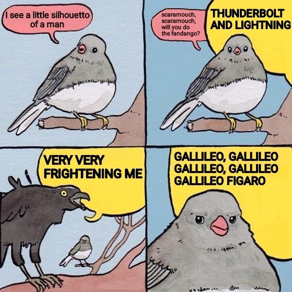 M a g n i f i c o o o o - meme