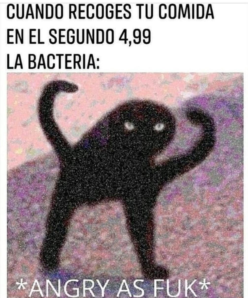 Pobresita bacteria - meme