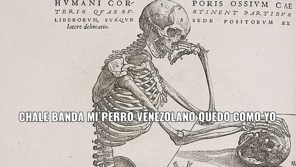 NO SOY VENEZOLANO NO SOY - meme