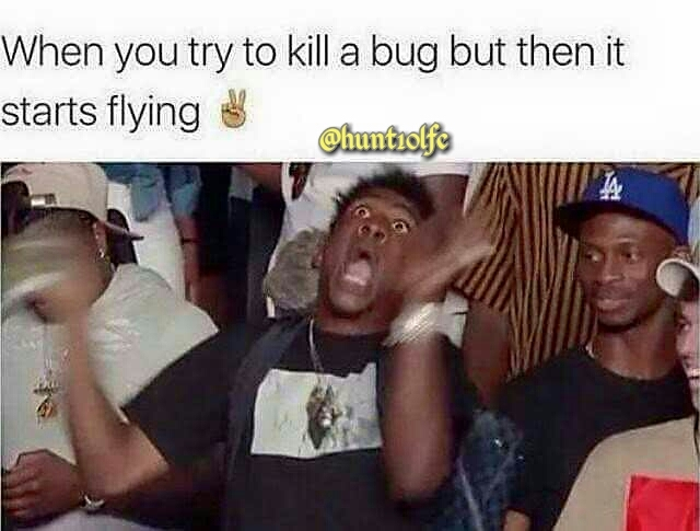 Bugs ain't loyal - meme