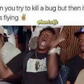 Bugs ain't loyal