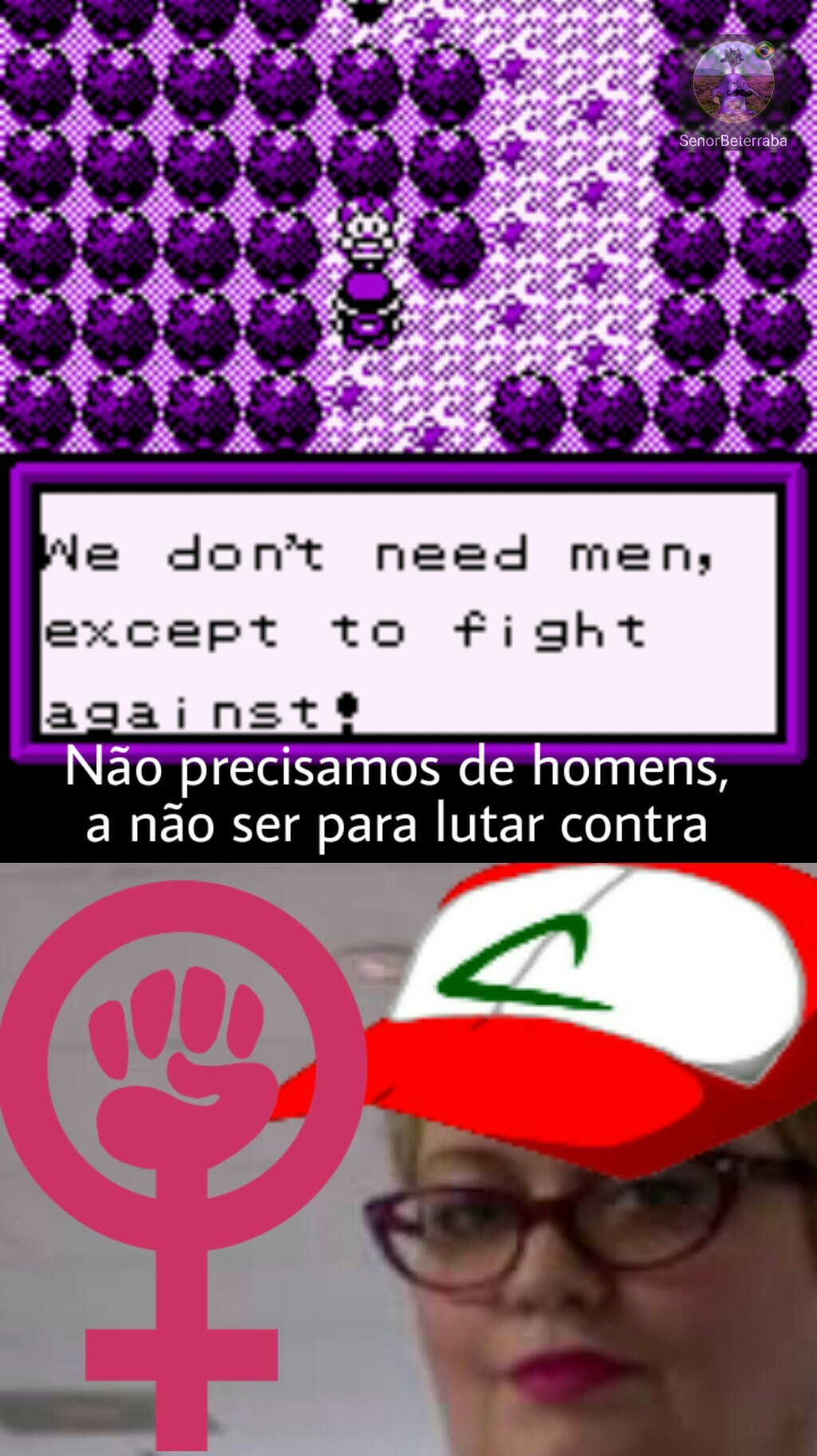 POKÉMON EMPODERAMENTO VERSION - meme
