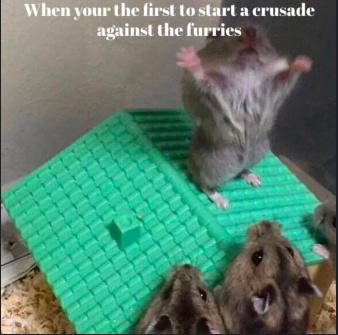Crusade time - meme