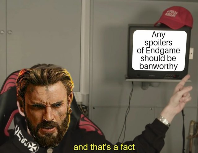Any spoilers of Endgame should be banworthy - meme