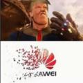 Rip Huawei