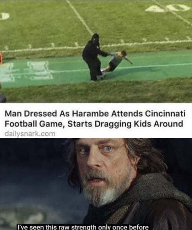 Man dressed as Harambe attends Cincinnati footbal game, starts dragging kids around - meme