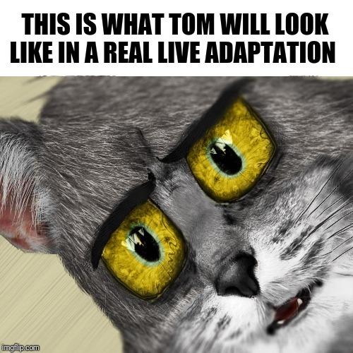 Tom in real life - meme