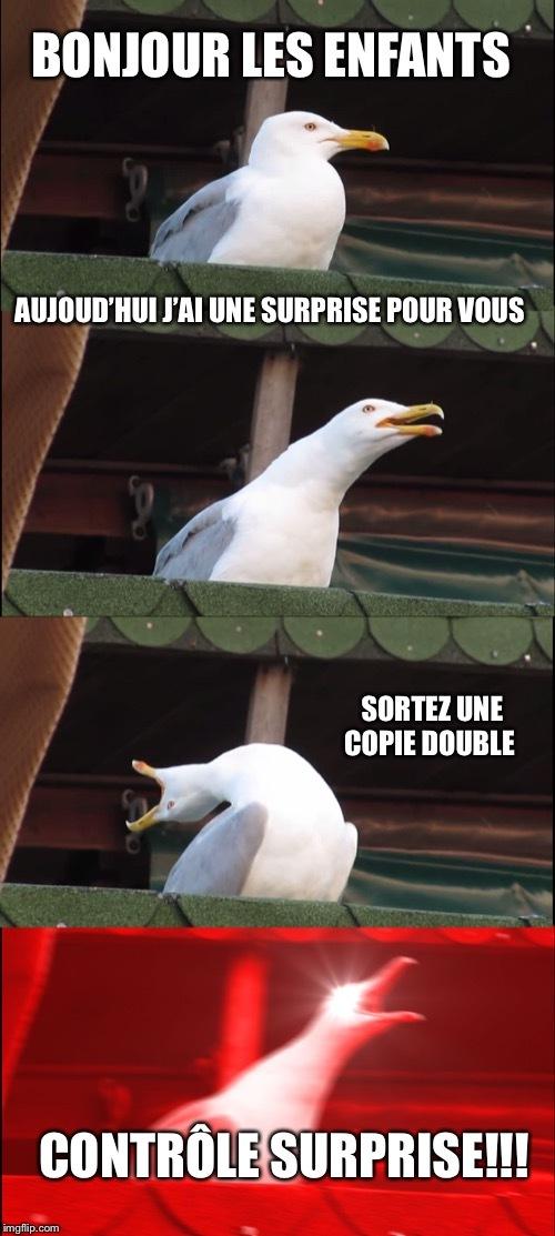 Le contrôle surprise du lundi matin - meme