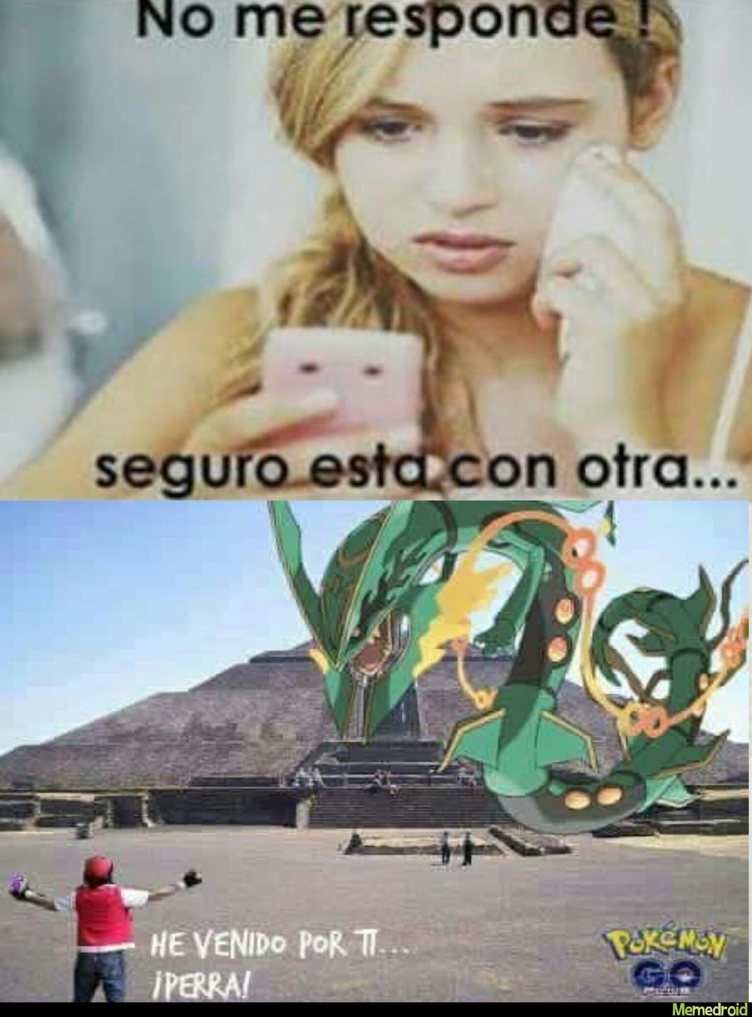 Pokemon go en mexico - meme