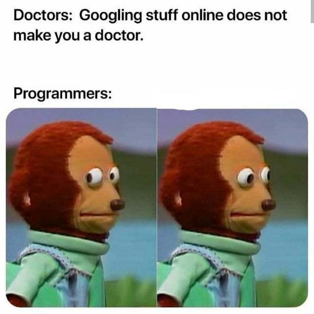 Programmers are just better at Googling stuff - meme