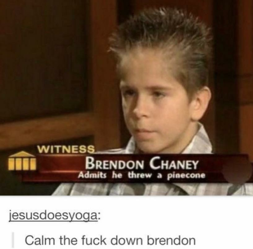 Calm the fuck down Brendon - meme