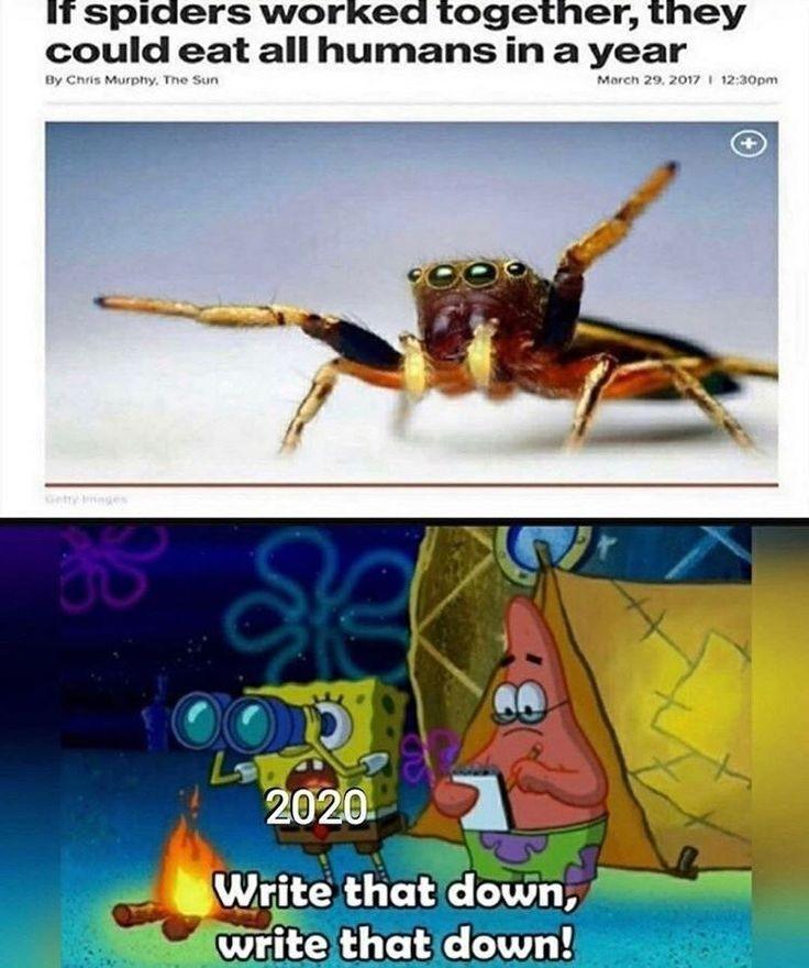 2020 NO - meme