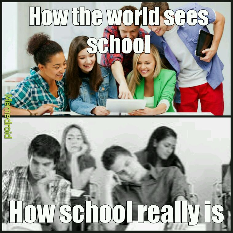 School sucks - meme