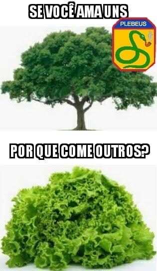 Esse aqui é pros veganos ambientalistas - meme