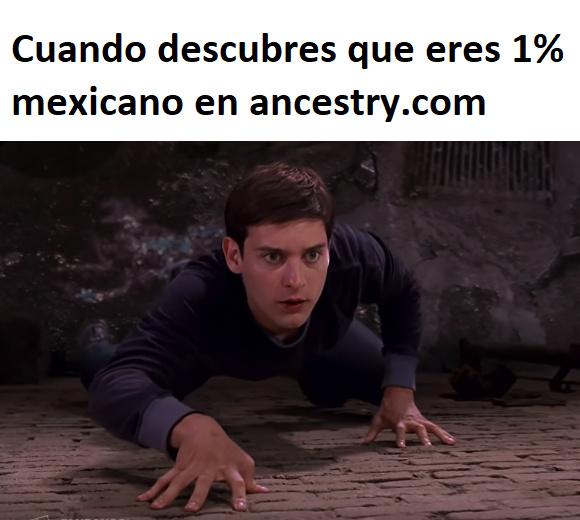 panchito trepamuros - meme