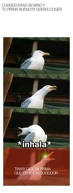 El meme de la prima, Cliche