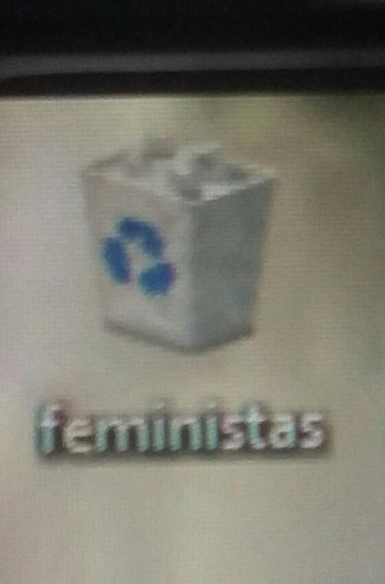 fiminista não e gente - meme