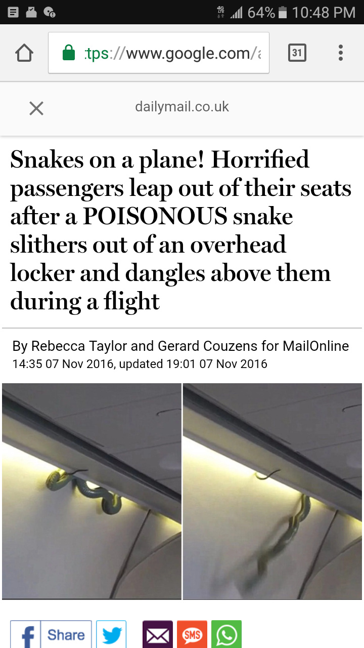 Snakes on a plane - meme